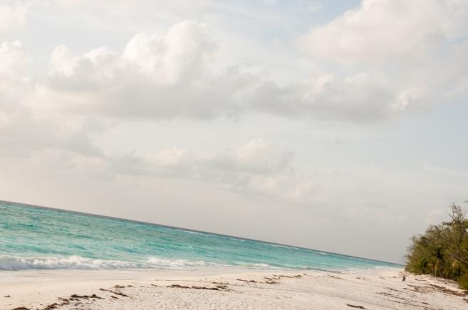 Aldabra Island, Seychelles --   A pristine paradise at any angle