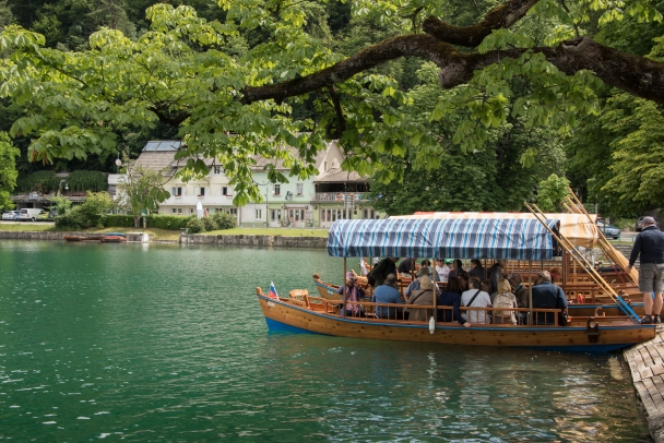 Going to the island on traditional wooden plenta (oared boats) on Lake Bled, Slovenia