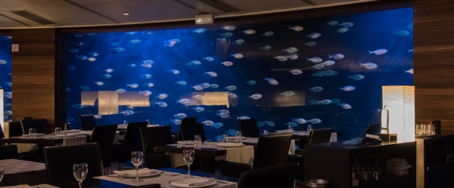 "An aquariumn along the outer wall completely surrounds the interior of the ""underwater"" Restaurant Submarino L'Oceanografic (Submarine Restaurant at the Oceanographic Park), City of Arts and Sciences, Valencia, Spain"