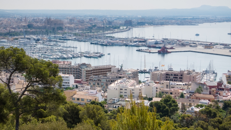 Hilltop view of yacht harbor with Cathedral in background, Palma de Mallorca, Mallorca, Spain