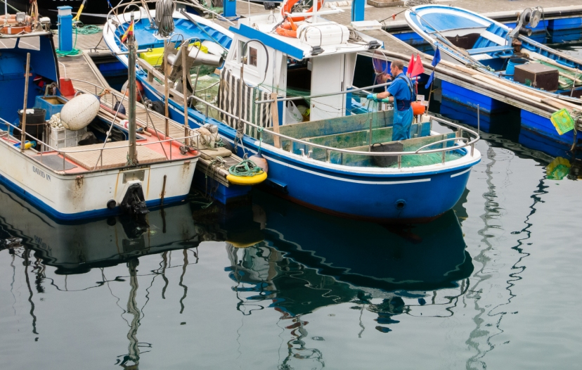 Part of the fishing fleet at the pier in Lastres, Asturias region (near Gijon), Spain
