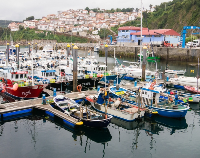 The fishing fleet at the pier in Lastres, Asturias region (near Gijon), Spain
