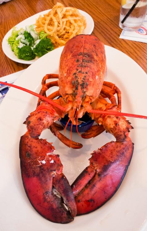 """I must be fresh, because I'm at"" Legal Sea Foods, Cambridge, MA, USA"