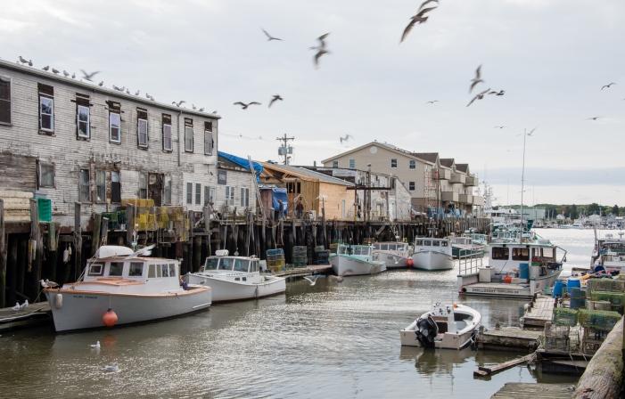 old port portland maine usa photo walk where in the On portland maine fishing