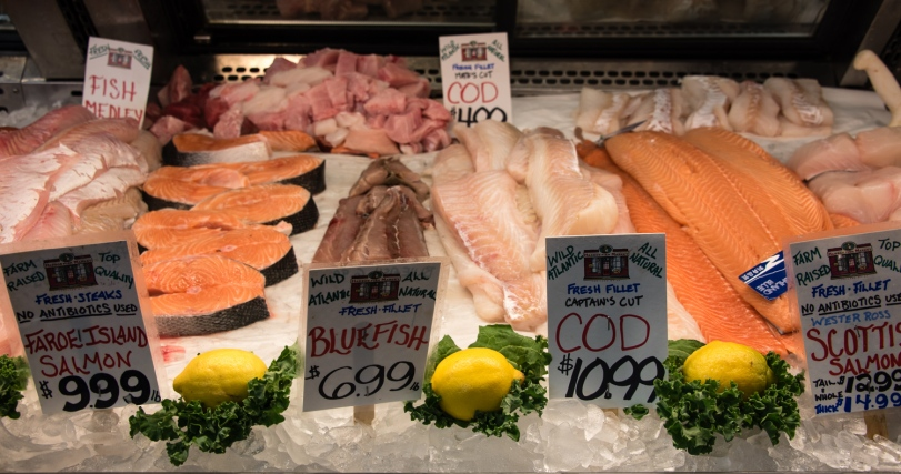 Fresh fish fillets for sale, Harbor Fish Market, Portland, Maine, USA