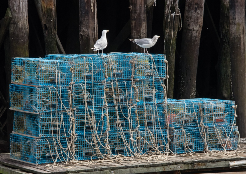 Lobster traps stacked up at Fish Auction Pier, Portland, Maine, USA