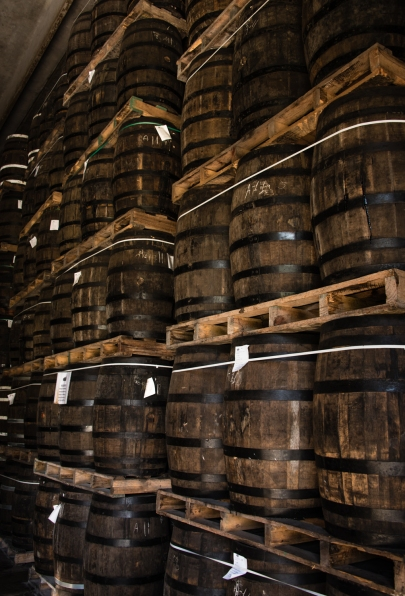 American oak aging barrels full of rum at the Ron Barceló factory, Santo Domingo, Dominican Republic