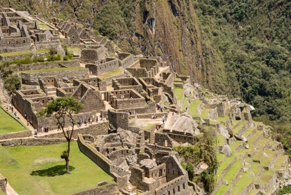 Closeup of terraced buildings in the Lower Urban Sector of Machu Picchu, Peru