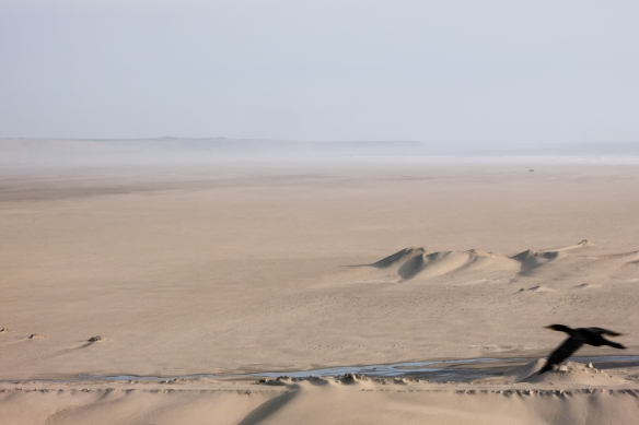 The vastness of the ocean-front desert, Salaverry (port), Peru