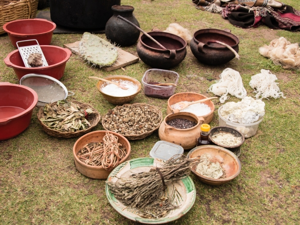 "A selection of plants and herbs that are the sources of the all natural dyes for wool at the Center for Weavers of Chinchero (""Awayricch'arichiq""), Chinchero (Sacred Valley of the Incas), Peru"