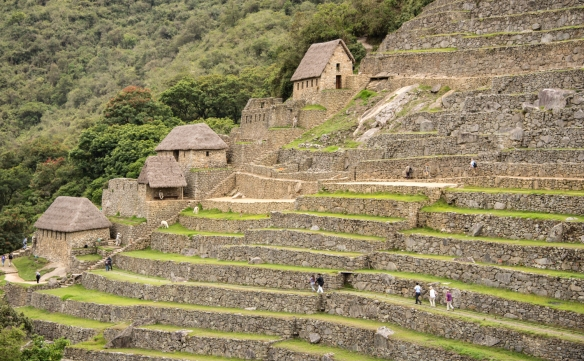 Closeup of the upper agricultural terraces (with a very advanced, integrated Inca-designed watering system) at Machu Picchu, Peru