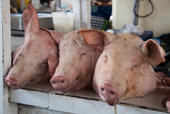 "Our first sight at Mercado San Pedro -- ""Three little piggies went to market..."", Cuzco, Peru"