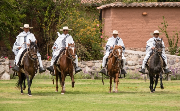 Peruvian Paso Horses (from the Wayra Ranch) demonstration after our luncheon on the terrace at Wayra Ranch, Urubamba Province (Sacred Valley of the Incas), Peru