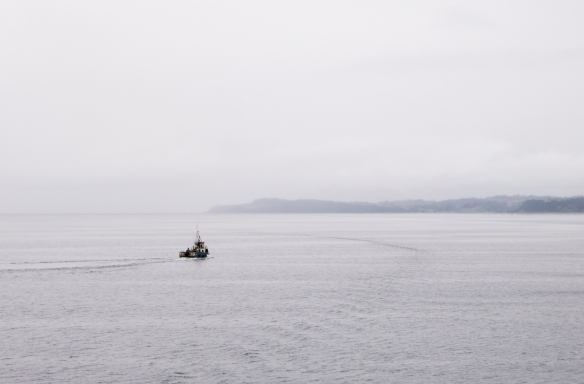 A lone fishing boat heading out from Castro, Chiloe Island (Patagonia), Chile