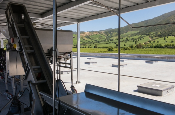 A view of the Apalta Vineyards from the roof of the Viña Montes winery, looking across a portable grape sorting table, Colchagua Valley, Chile
