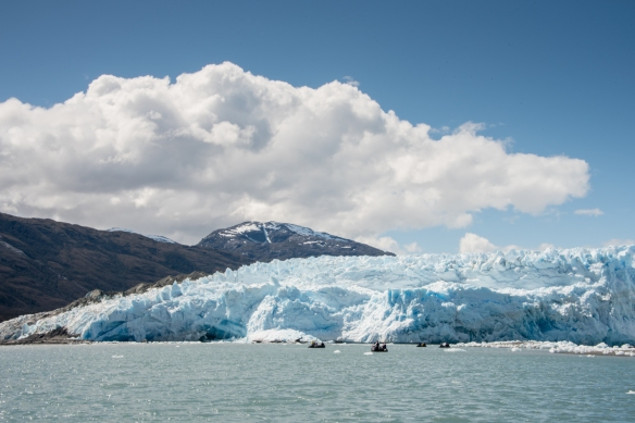 Four of the ship's Zodiac inflatable boats heading in for closer views of Pio XI Glacier, also know as Brüggen Glacier, Bernardo O´Higgins National Park, Patagonia, Chile