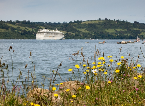 Our ship anchored in the bay at Castro, Chiloé Island, Chile