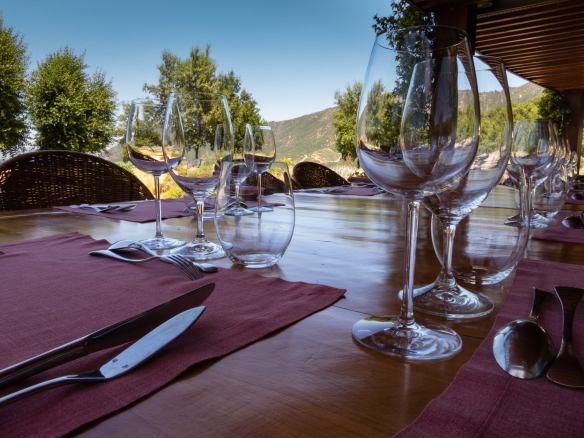 Our table for nine for our special luncheon at Lapostolle Residence, Casa Lapostelle, Santa Cruz, Colchagua Valley, Chile
