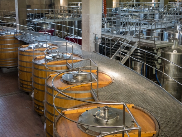 The wooden and stainless steel fermenting tanks at the Viña Montes winery receive grape juice by gravity, through the black-striped red hose (center)