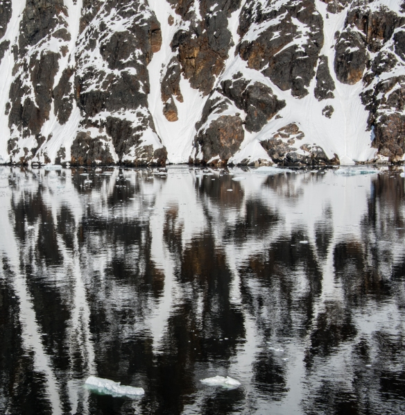 Brown and white reflections on the Lemaire Channel, Antarctica