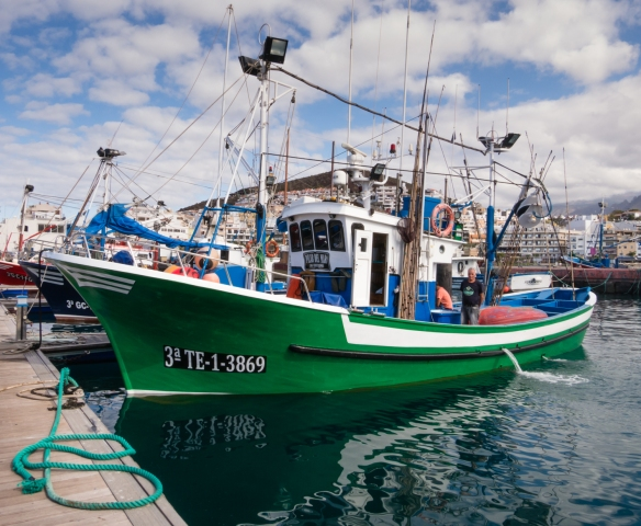 Fishing boats in Puerto Los Cristianos (the port of Los Cristianos), Cristianos, Tenerife, Canary Islands