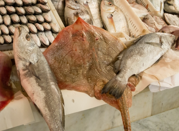 Fresh ray fish and other fresh fish for sale at a fish monger's stall in Marché Central (Central Market), Casablanca, Morocco