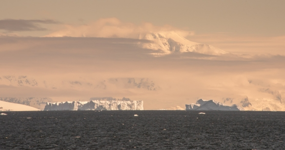 Giant icebergs with evening light as we sailed towards Drake Passage and Argentina from Port Lockroy, Antarctica