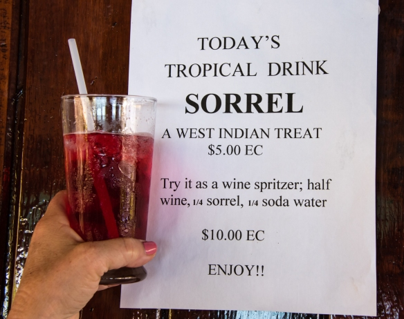 "The daily special tropical drink at Mac's Pizzeria was a Sorrel Spritzer, a ""West Indian treat"", Bequia, Grenadines, Caribbean Sea"