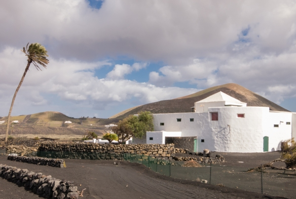 The palm tree that presides over the estate dates back to 1775 -- it is probably the tallest and oldest on the island; Bodegas El Grifo, Lanzarote, Canary Islands