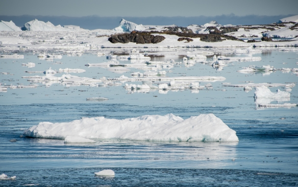 The view of the icebergs from the U.S. Antarctic Program's Palmer Station in Arthur Harbour on Avers Island, Antarctica