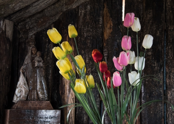 Virgen del Carmen and tulips in the old wooden church, Cabo de Hornos (Cape Horn), Chile