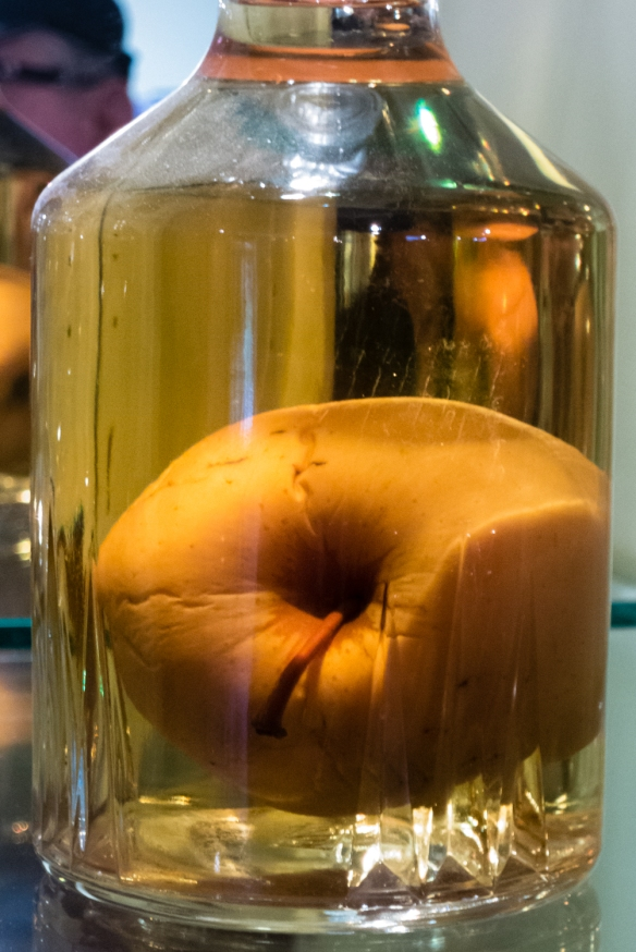 "A bottle of ""Calvados Pomme Prisonnier"" – Calvados in a glass bottle with a whole apple (now fermented) that was grown in the orchard inside the bottle; Calvados Christian Drouin, Coudray-Rabut, Normandy region, France"