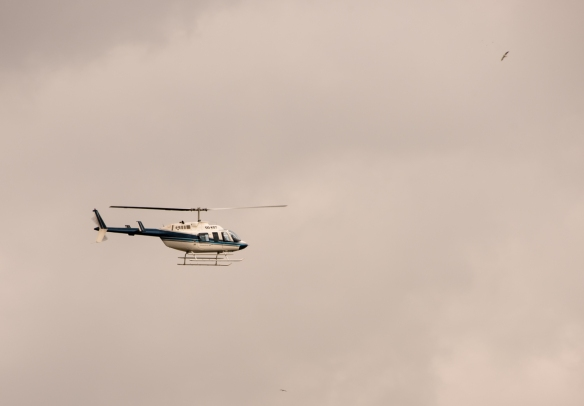 Our helicopter takes off for another flight, with the birds, over Antwerp, Belgium--