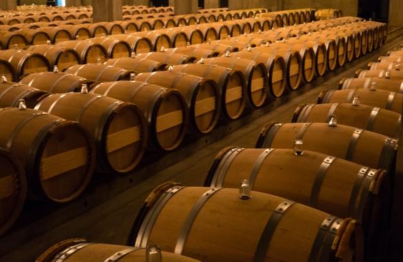 The barrel aging cellar at Château d'Yquem, Sauternes, Bordeaux region, France