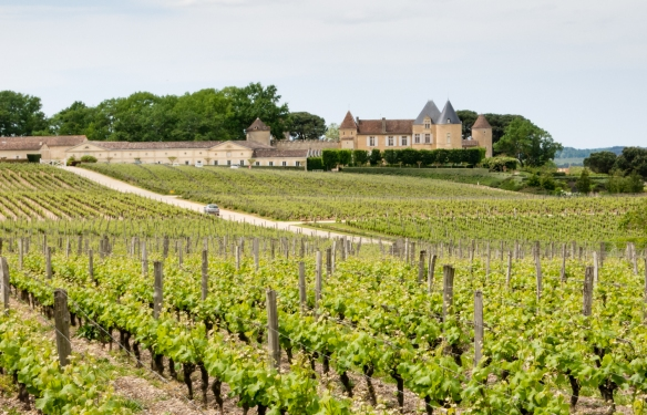 The vineyards and Château on the hill of the Château d'Yquem estate, Sauternes, Bordeaux region, France