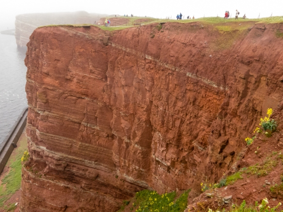 """A close-up of a section of the iron-rich, reddish, tall cliffs, photographed here in the rain on the Westklippe (western cliff) from the trail along the """"Oberland"""" (upper land) section of the city, Helgoland, Germany"""