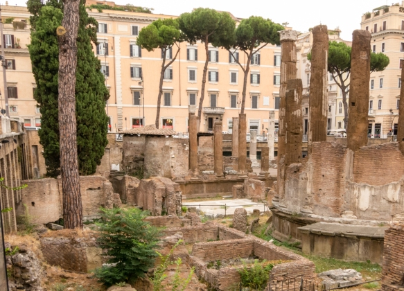 Largo di Torre Argentina hosts four Republican Roman temples and is where Emperor Julius Caesar was stabbed 23-times by his fellow senators on the Ides of March (15 March) behind the pine tree in the upper left, Roma, Italy