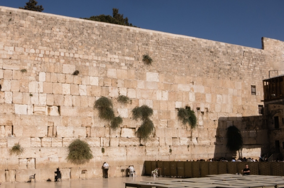 in-recent-years-the-western-wall-plaza-has-been-divided-into-two-sections-one-left-side-for-men-to-approach-the-wall-and-pray-and-a-second-right-side-for-women