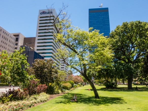 a-view-of-some-of-the-new-skyscrapers-downtown-as-seen-from-the-gardens-outside-the-supreme-court-perth-australia