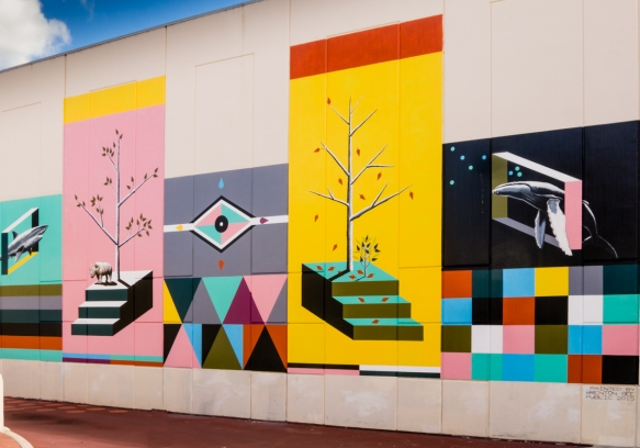 another-parking-lot-mural-fremantle-australia