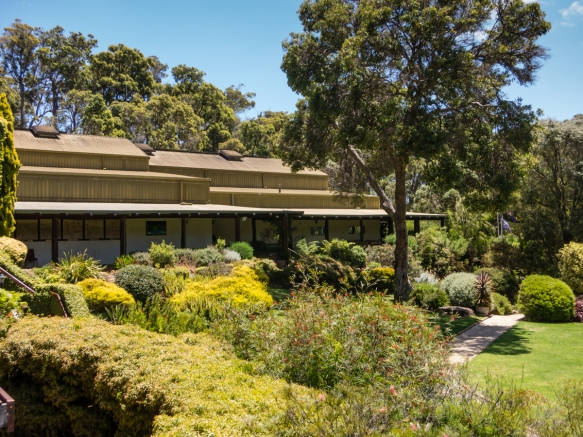 leeuwin-estate-is-set-on-a-former-cattle-ranch-and-its-wood-and-adobe-building-with-a-corrugated-metal-roof-appears-a-bit-dated-at-first-margaret-river-region-australia