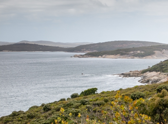 looking-across-frenchman-bay-from-golf-links-road-in-albany-west-australia