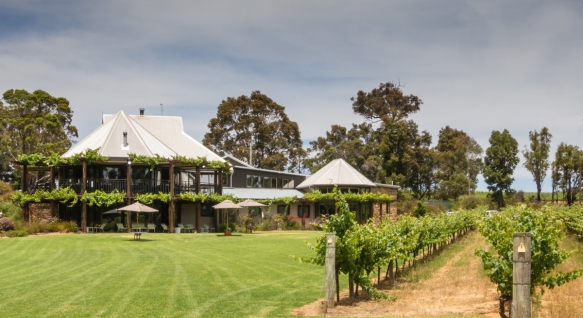 vineyards-winery-and-restaurant-on-the-upstairs-deck-at-vasse-felix-margaret-river-region-australia