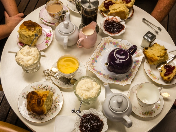 a-real-old-fashioned-english-tea-with-scones-and-clotted-cream-and-jam-at-a-tea-room-in-central-tilba-new-south-wales-australia