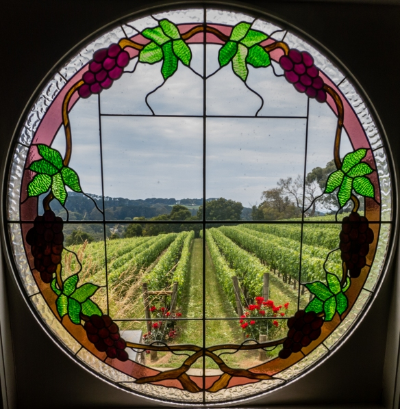 a-view-of-the-old-shiraz-syrah-vineyard-at-paringa-estate-winery-the-mornington-peninsula-wine-region-victoria-australia-from-a-beautiful-stained-glass-window-in-the-estates-restaurant