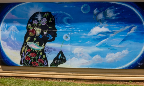 a-winning-mural-a-of-the-international-sheffield-mural-fest-annual-competition-mural-park-sheffield-tasmania-australia