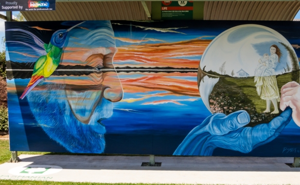 a-winning-mural-b-of-the-international-sheffield-mural-fest-annual-competition-mural-park-sheffield-tasmania-australia