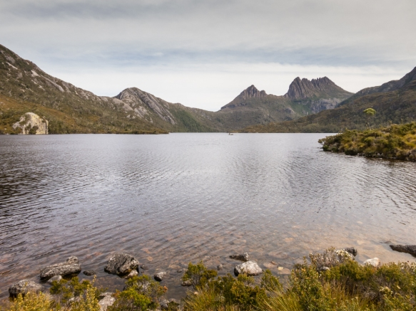 dove-lake-lies-within-cradle-mountain-national-park-the-island-states-most-visited-national-park-tasmania-australia-the-area-was-first-visited-by-aborigines-more-than-35000-years-ago-in
