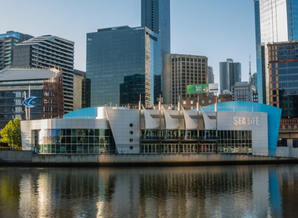 sea-life-melbourne-aquarium-is-home-to-over-10000-animals-including-one-of-the-worlds-largest-saltwater-crocodiles-in-the-state-of-the-art-croc-lair-exhibit-melbourne-victoria-australia