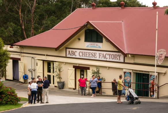 the-central-business-although-it-employs-very-few-people-in-central-tilba-is-the-abc-cheese-factory-founded-in-1891-at-the-edge-of-town-which-sources-milk-from-the-owners-dairy-tilba-rea